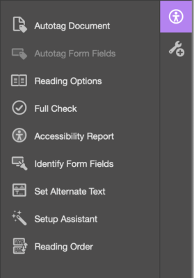 Accessibility Tools panel has 9 tools: Autotag Document, Autotag Form Fields, Reading Options, Full Check, Accessibility Report, Identify Form Fields, Set Alternate Text, Setup Assistant, and Reading Order.