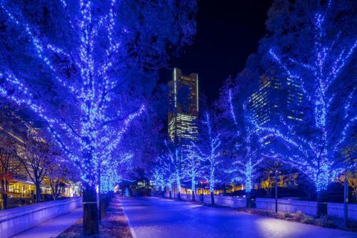 "Grandmall Park, Illumination ""Yokohama Milaight"", Sakuragi-cho"